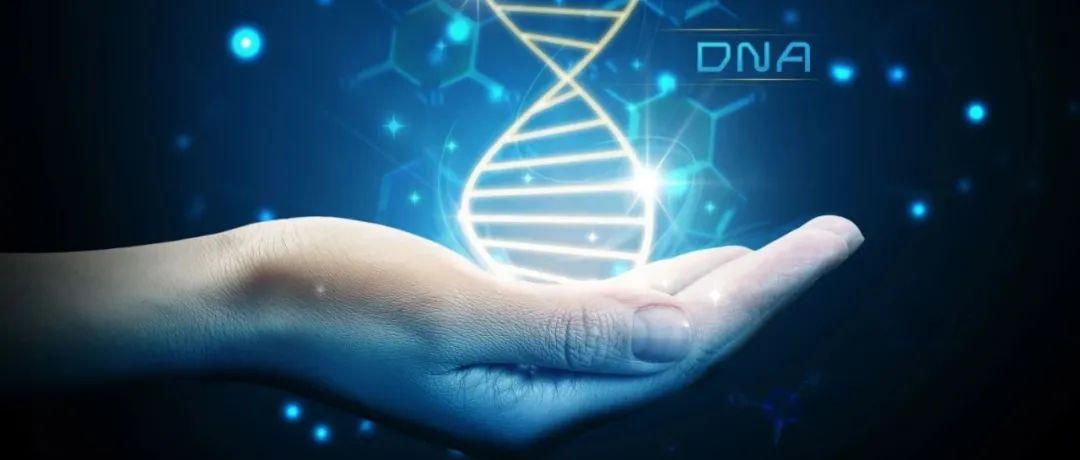 40余年来,围绕p53靶点开发的创新疗法有哪些重要进展?